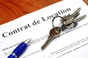 contrat de location-petit