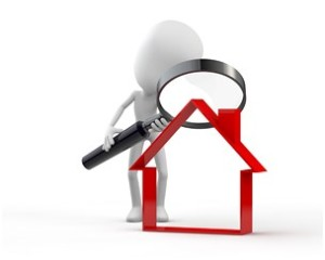 loupe analyse immobilier