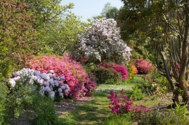 Comment faire son propre jardin l 39 anglaise - Comment faire son jardin paysager ...