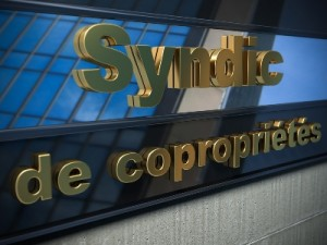 syndic