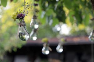 Des fleurs et des ampoules