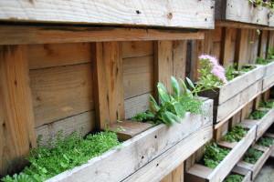 jardinière palette de bois