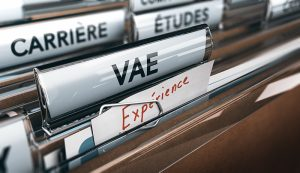 VAE agent immobilier